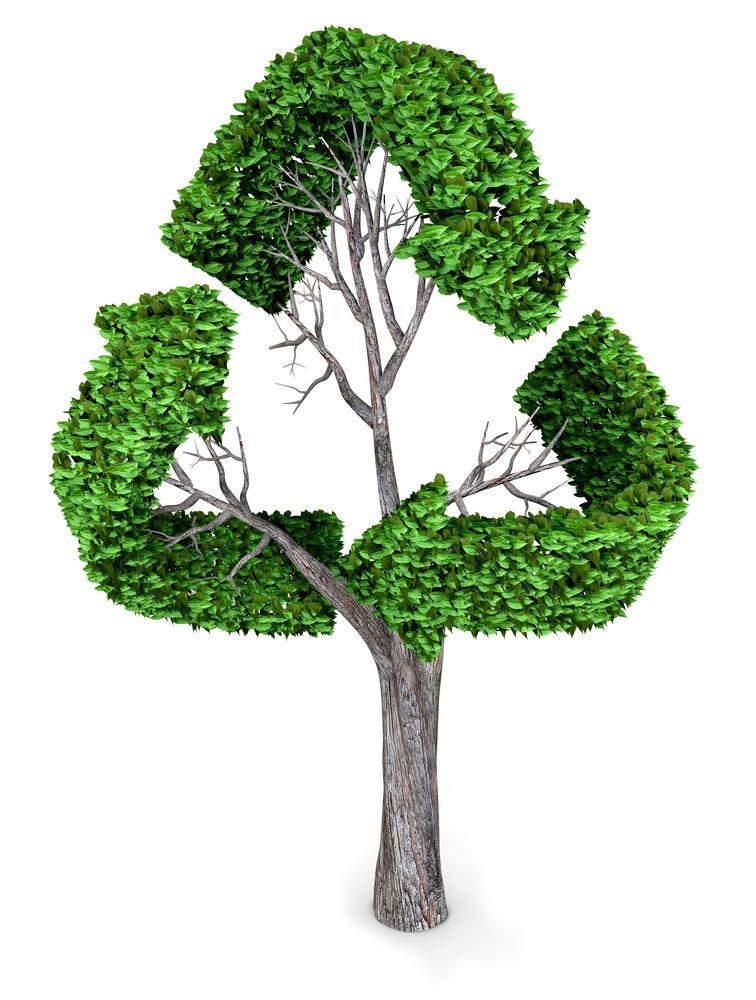 open loop vs closed loop recycling