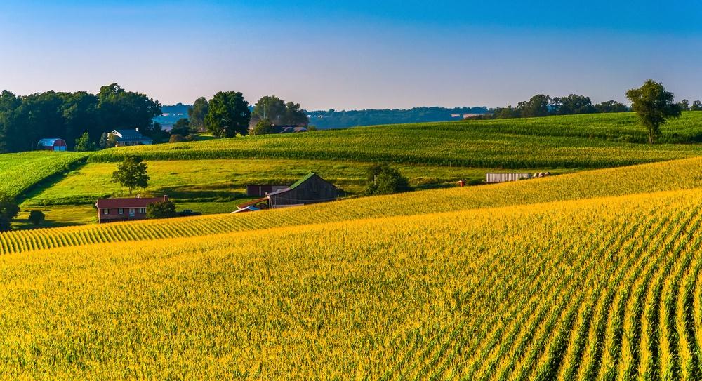 sustainable-development-crop-rotation