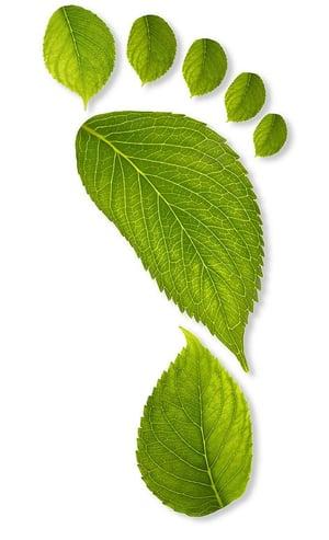 sustainability companies